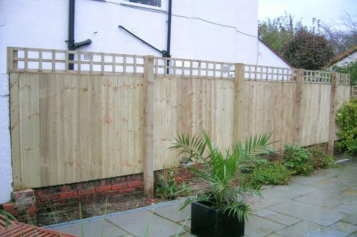 New patio and timber fencing with trellis on top