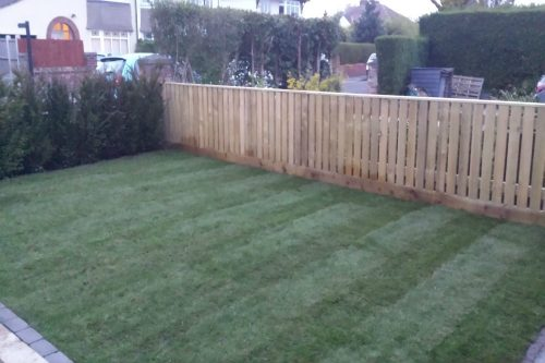 Turfing, hedge planting and fence installation in Thingwall, Wirral