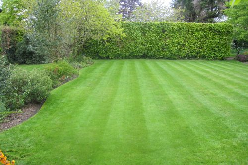 Garden maintenance in Heswall, Wirral